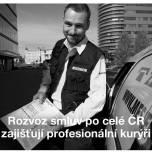 Case study ČEZ